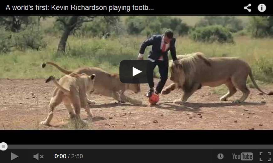 Video ecco l'uomo che gioca a calcio con i leoni