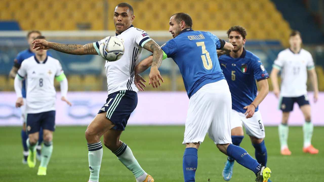 Italia ed Irlanda in azione