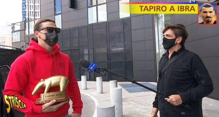 Tapiro per Ibrahimovic